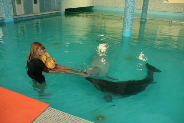 Дельфинотерапия Лазаревское (Сочи)