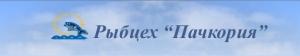 """Рыбцех """"Пачкория"""". Адрес: Ростовская область, Цимлянск,  , ул.Нагорная, 2ж."""