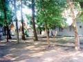 """База отдыха """"Виноградарь"""". Адрес: Краснодарский край, Анапский р-н.,  Благовещенская, около 40 км. от Анапы), песчаная коса."""