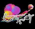 Свадебный супермаркет «Салют». Адрес: Ростовская область, Ростов на Дону,  , ул. Красноармейская 170.