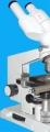 ГУЗ «Волгоградский областной клинический кожно-венерологический диспансер № 1». Адрес: Волгоградская область, Волгоград,  , ул.Новосибирская, 71.