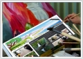 """Студия Web дизайна """"Top Masters"""". Адрес: Ставропольский край, Ставрополь,  , ул. 2-я Промышленная, д.3."""